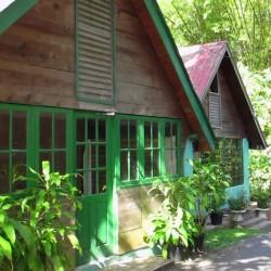 Nature Tour (Asa Wright Nature Center)