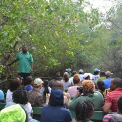 Caroni Bird Sanctuary Tour