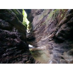 Covingne River Adventure