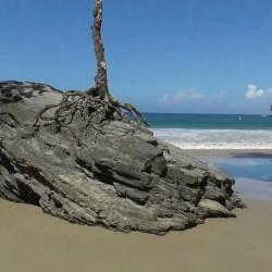 Trip to Las Cuevas Bay
