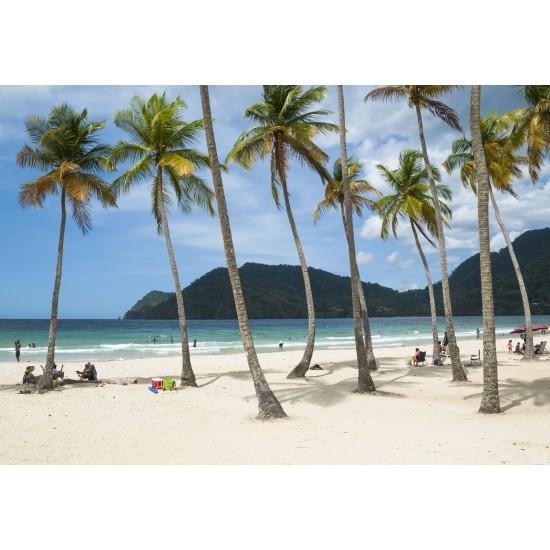 Trip to Maracas Beach
