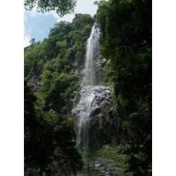 Maracas Waterfall and St. Joseph Church
