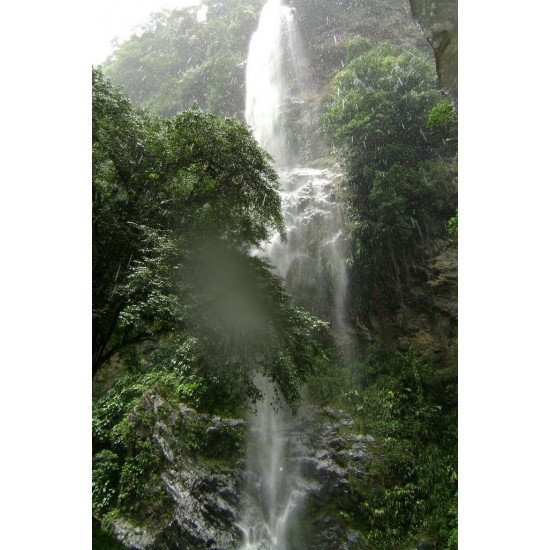 Maracas Waterfall and St. Joseph Church